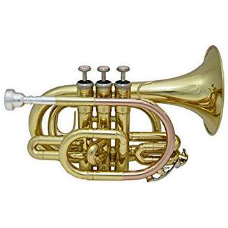 Quelle est la meilleure trompette de poche ? Le Top 10 de 2020 !